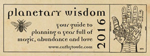 2016 planetarty wisdom smb